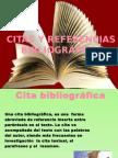 Citas y Referencias Bibliográfificas Retroalimentación