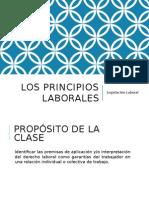 Principios Laborales