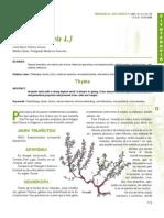 Dialnet-TomilloThymusVulgarisL-202456.pdf