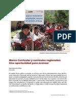 Marco Curricular y Curriculos Regionales