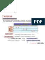 Modelos_Hidrologicos