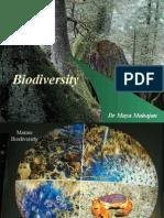 Bio Diversity Conservation 1426775874265
