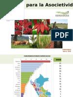 AGROIDEAS.pptx