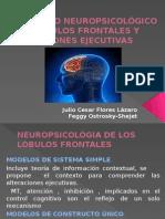 Desarrollo Neuropsicológico de Lóbulos Frontales y Funciones Ejecutivas