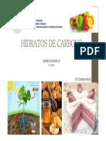 2014-Hidratos de Carbono