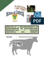 Primer Informe de Biotecnologia Reproductiva