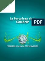 Fpac106 Fort Conanp