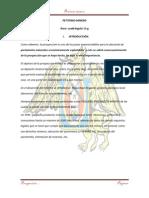 PETITORIO MINERO-andy -trabajo.pdf