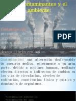 contaminacion ambiental II.pdf