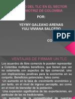 Impacto Del Tlc en El Sector Automotriz de Colombia