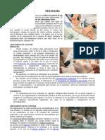 EUTANASIA.doc