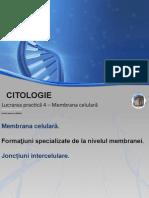LP Citologie 4
