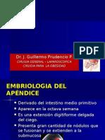 Apendicitis Aguda Final