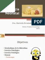 Ictericia Neonatal.pptx