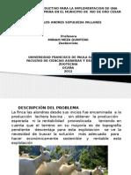 presentacin1-120222204104-phpapp02CABRA.pptx