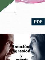 Emoción, Agresión y Estrés
