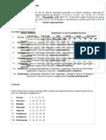 Chestionar Climat Organizational IV