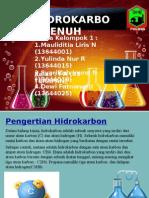 Kelompok 1 Hidrokarbon Jenuh