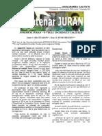 Despre Juran