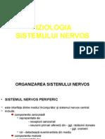 Fizio Sistemul Nervos LP
