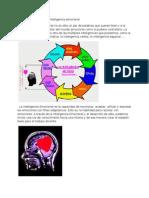 Dinámicas de Grupo en Inteligencia Emocional