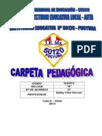Carpeta Pedagogica 5ºgrado 2013