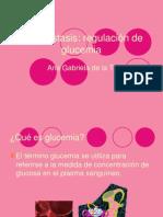 Homeóstasis Glucemia
