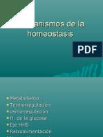 Mecanismos de La Homeostasis
