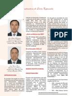 Infraestructura de Datos Espaciales.pdf