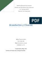 Acueductos y Cloacas