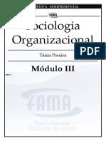 sociologia_organizacional2_md3