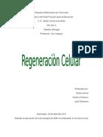 Regeneracion Celular
