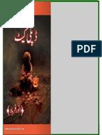 Duplicate by Anwar Farhad Bookspk Net