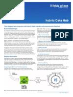 Factsheet Data Hub En