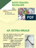 Ap. intra-extraorale curs VI.ppt