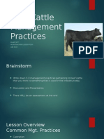 beef cattle management practices (unit plan)