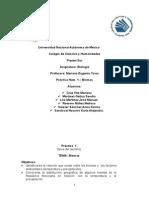 Informe práctica 1 ecología