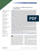 ANATOMIA DE PUNTOS CRANEOMETRICOS.pdf