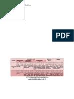 Primera Parte laboratorio Investigacion Cualitativa.docx