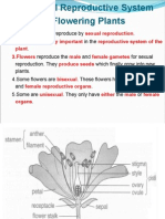 4.8 Sexual Reproductive System of Flowering Plants