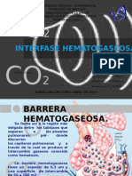 INTERFASE HEMATOGASEOSA