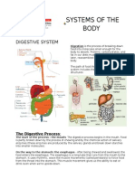 Systems of the Body (Digestive)