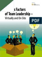 Success Factors Team Leadership