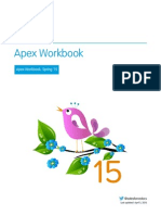 Apex Workbook