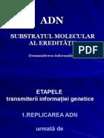 C3. Replicarea ADN. Diviziunea Celulara.