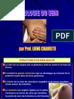 Sémiologie Du Sein 09