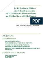 Aplicación Del Estándar PMI en Proy Mtto