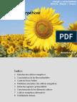 CULTIVOS_ENERGETICOS.pdf