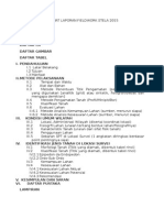 Format Laporan Fieldwork Stela 2015