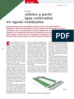 Biocombustibles a Partir de Micro Algas